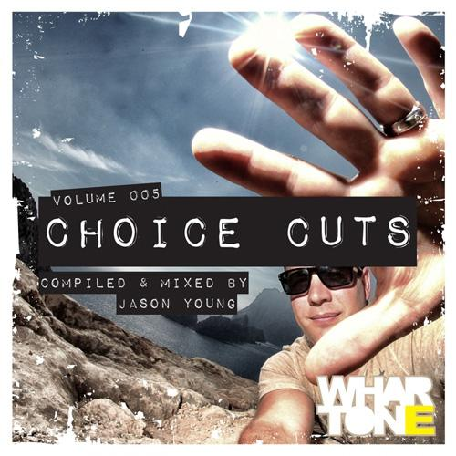 1415719325_va-choice-cuts-vol.-005-mixed-by-jason-young-2014 (1)