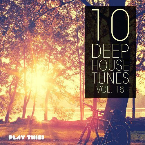 Va 10 deep house tunes vol 18 2015 320kbpshouse net for Deep house tunes
