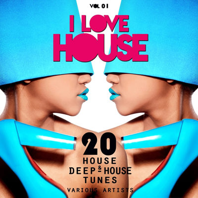 VA - I Love House Vol 01 - 20 House And Deep House Tunes (2015)